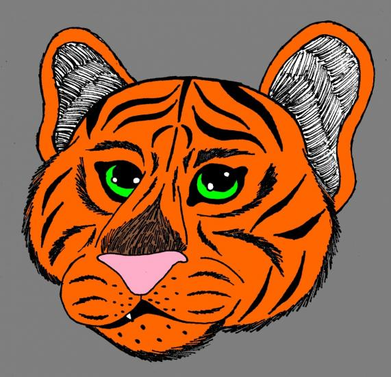 Tiger(Orange)
