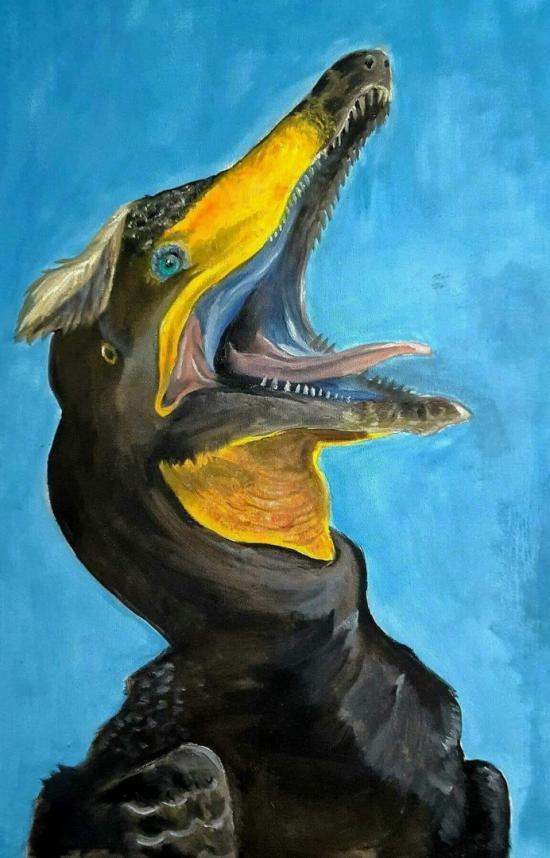 Cormorant Raptor