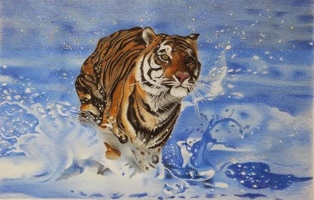 Tiger going for a splash