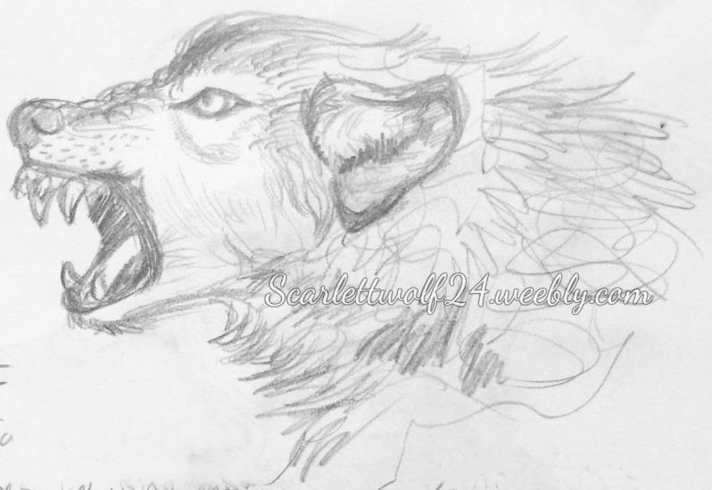 Angry Woof Stylized Photo Study