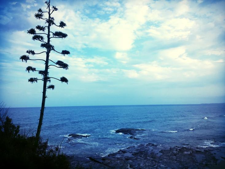 AUSTINMER BEACH - NSW