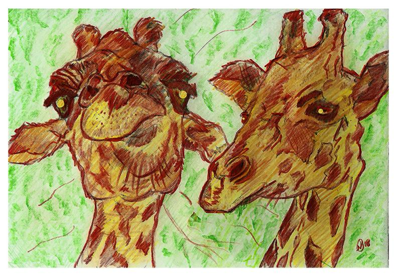 those giraffes