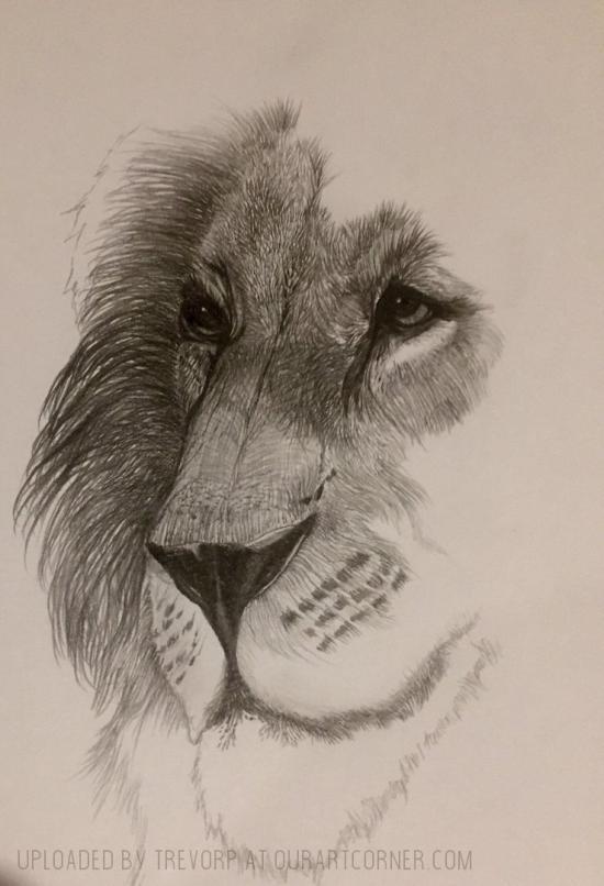 LION - WIP