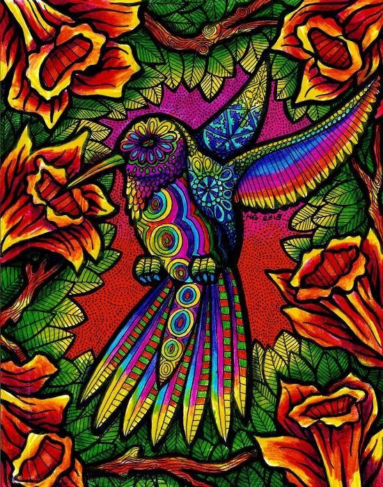 Sunset Hummingbird
