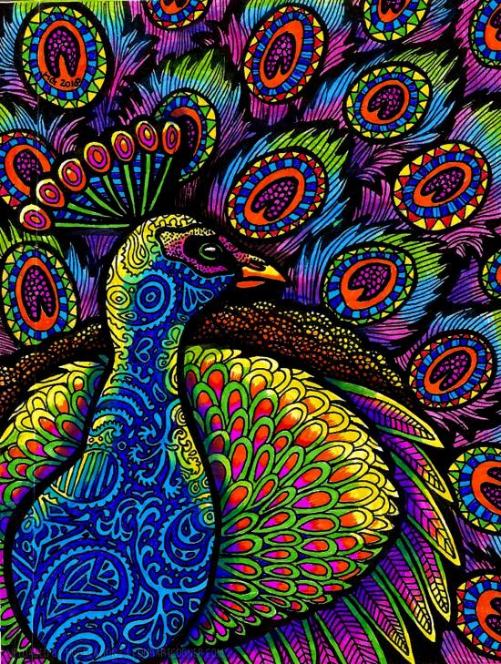 Colors of the Peacock