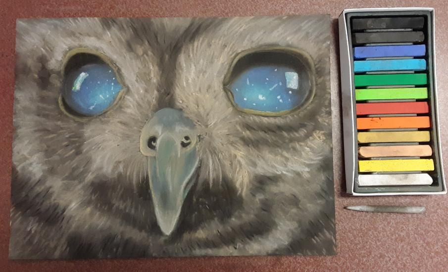 Starry Eyed Owl