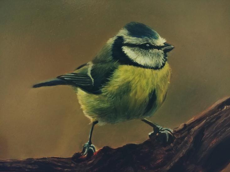 Bird oil painting