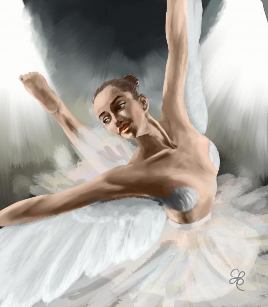 Swan's Flight