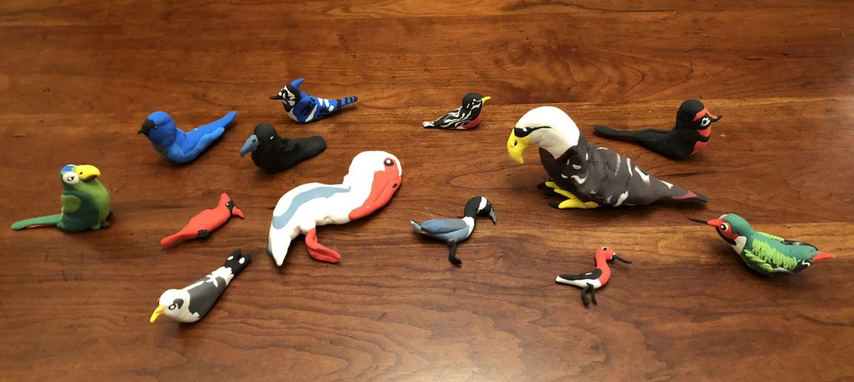 Model Magic Birds