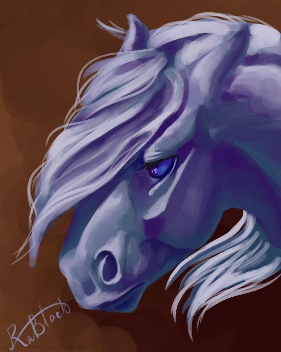 Scetch of horse's head