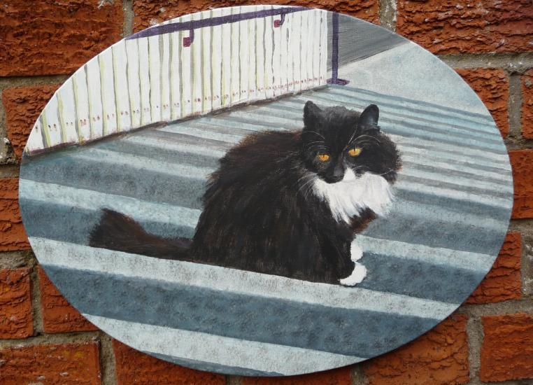 Portrait of Smudge The Cat