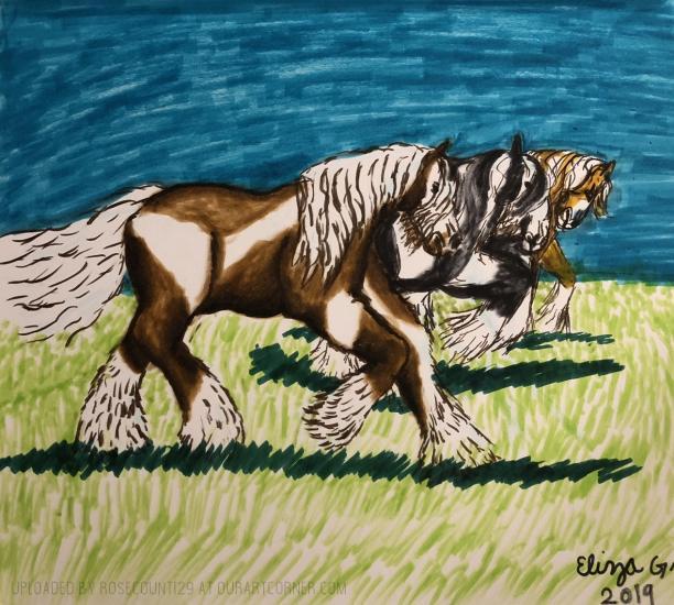 Tinker Horse aka Gypsy Vanner Horse