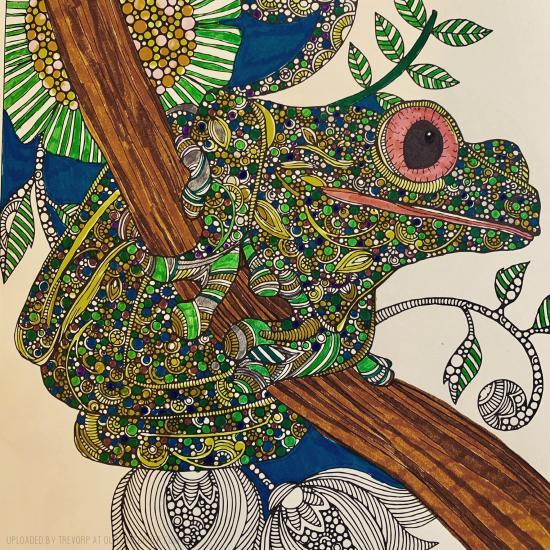 GREEN TREE FROG - WIP