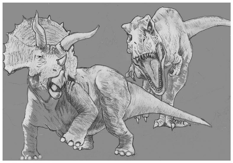 The Rex attacks