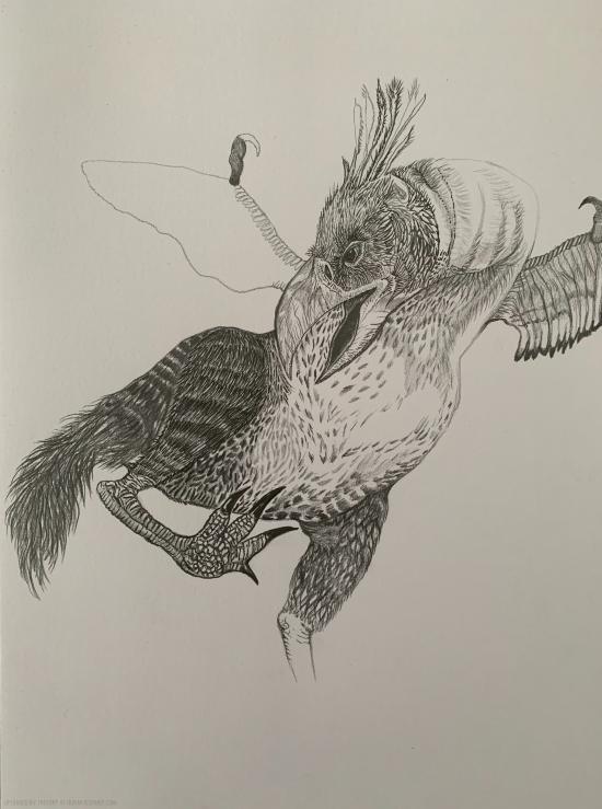 TERROR BIRD - WIP