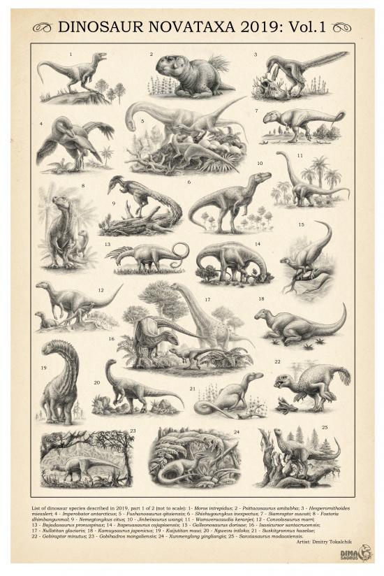 Dinosaur Novataxa 2019, Vol.1
