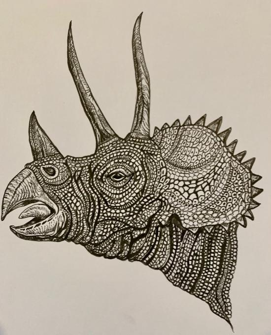 WIP - TRICERATOPS