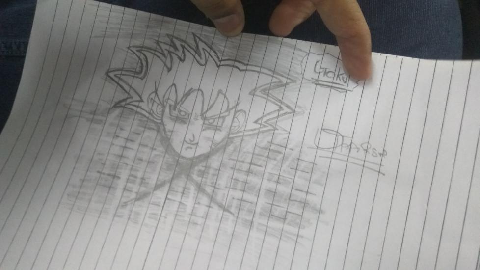 The Goku
