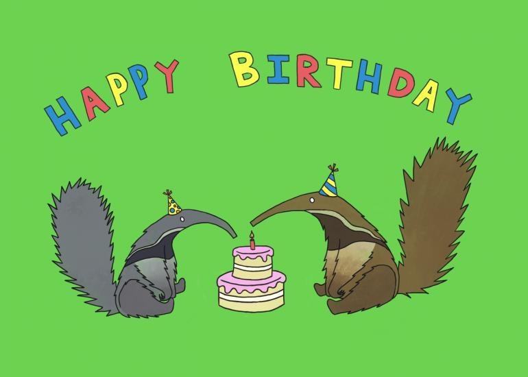 Anteaters Birthday