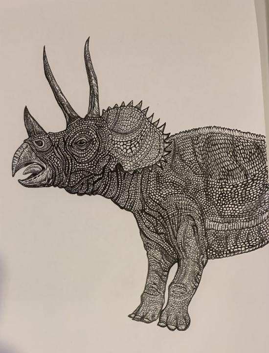 TRICERATOPS- WIP