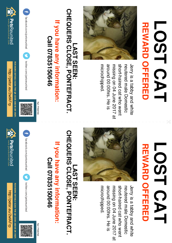 Lost pet flyers - Lost cat: Tabby and white cat called Jerry