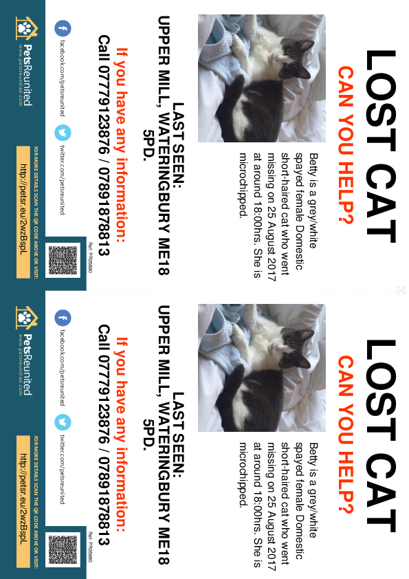Lost pet flyers - Lost cat: Grey/White cat called Betty