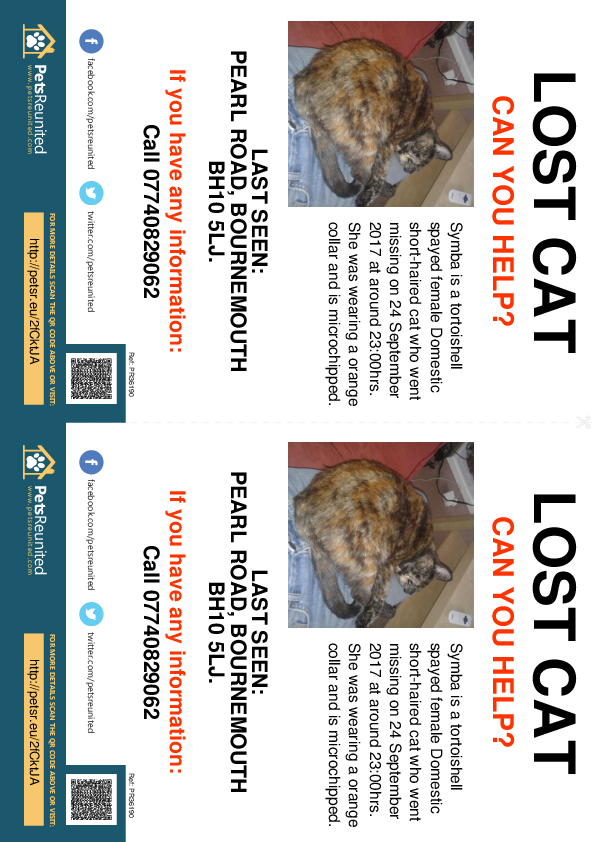 Lost pet flyers - Lost cat: Tortoishell cat called Symba