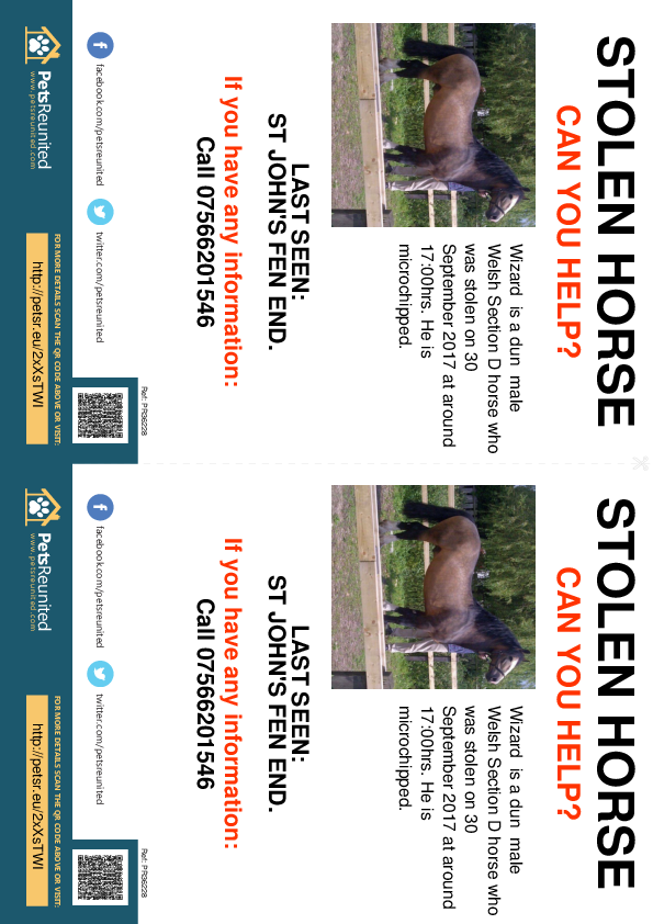 Stolen pet flyers - Stolen horse: Dun  Welsh Section D horse called Wizard
