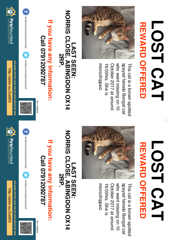Lost pet flyers - Lost cat: Brown Spotted Bengal cat [name witheld]