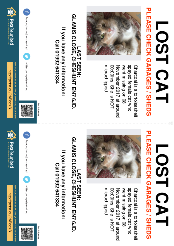 Lost pet flyers - Lost cat: Tortoiseshell  cat called Charcoal