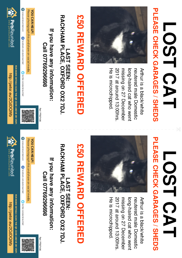 Lost pet flyers - Lost cat: Black/White cat called Arthur