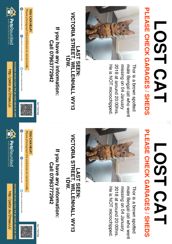 Lost pet flyers - Lost cat: Brown Spotted Bengal cat called Thor