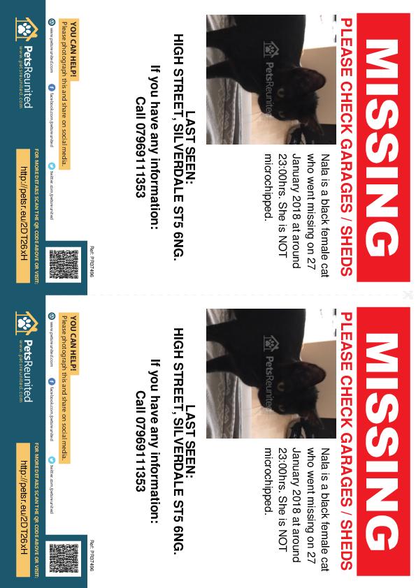 Lost pet flyers - Lost cat: Black cat called Nala
