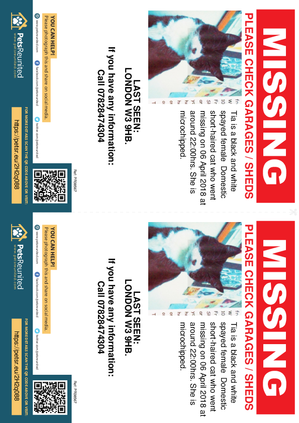 Lost pet flyers - Lost cat: Black and white cat called Tia