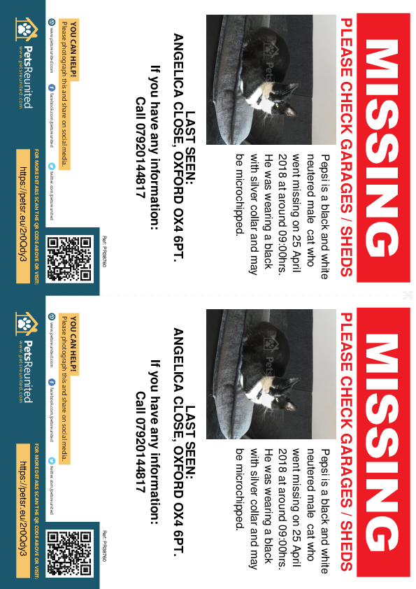 Lost pet flyers - Lost cat: Black and white cat called Pepsi
