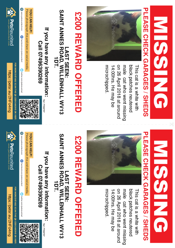Lost pet flyers - Lost cat: White with black patches cat [name witheld]