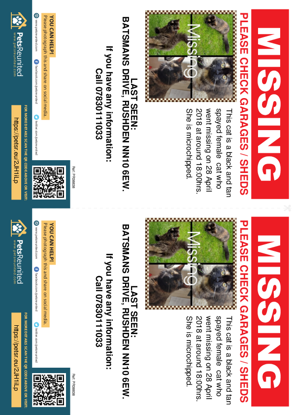 Lost pet flyers - Lost cat: Black and tan cat [name witheld]