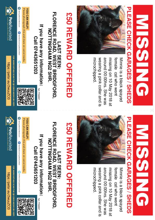Lost pet flyers - Lost cat: Black cat called Minnie