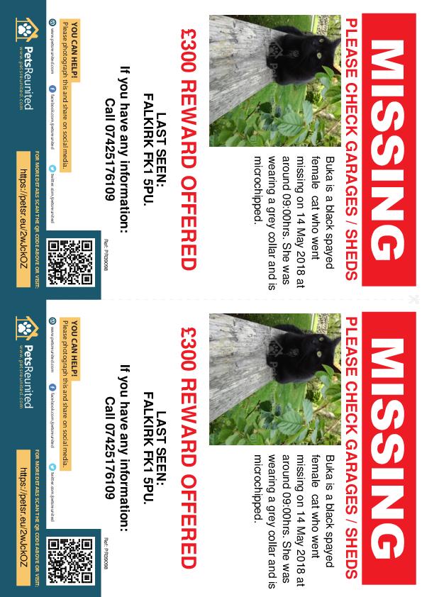 Lost pet flyers - Lost cat: Black cat called Buka