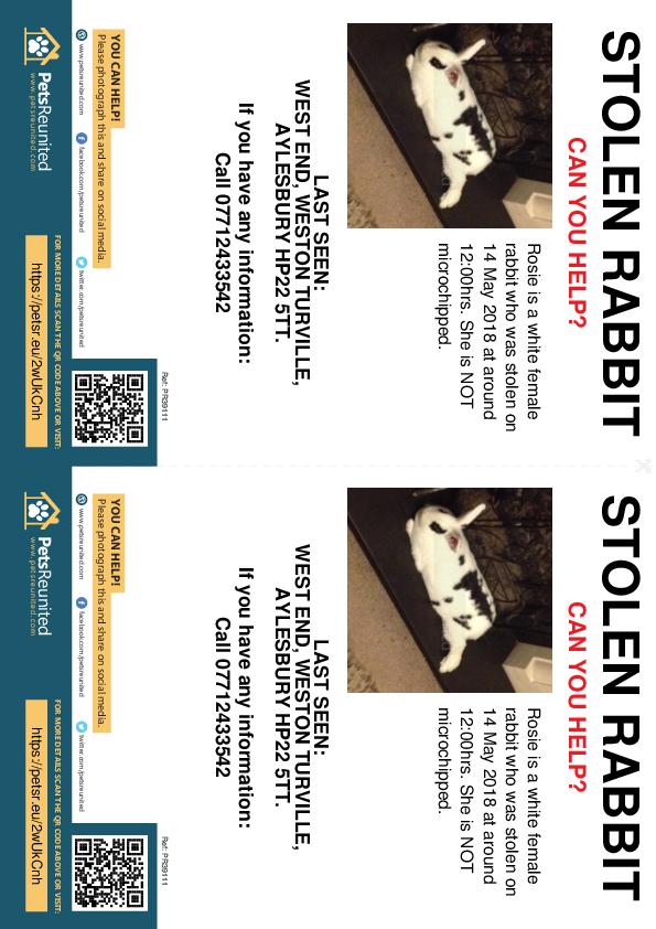 Stolen pet flyers - Stolen rabbit: White rabbit called Rosie