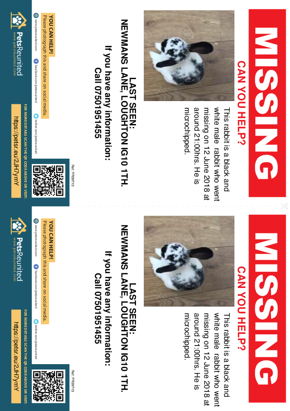 Lost pet flyers - Lost rabbit: Black and white rabbit [name witheld]