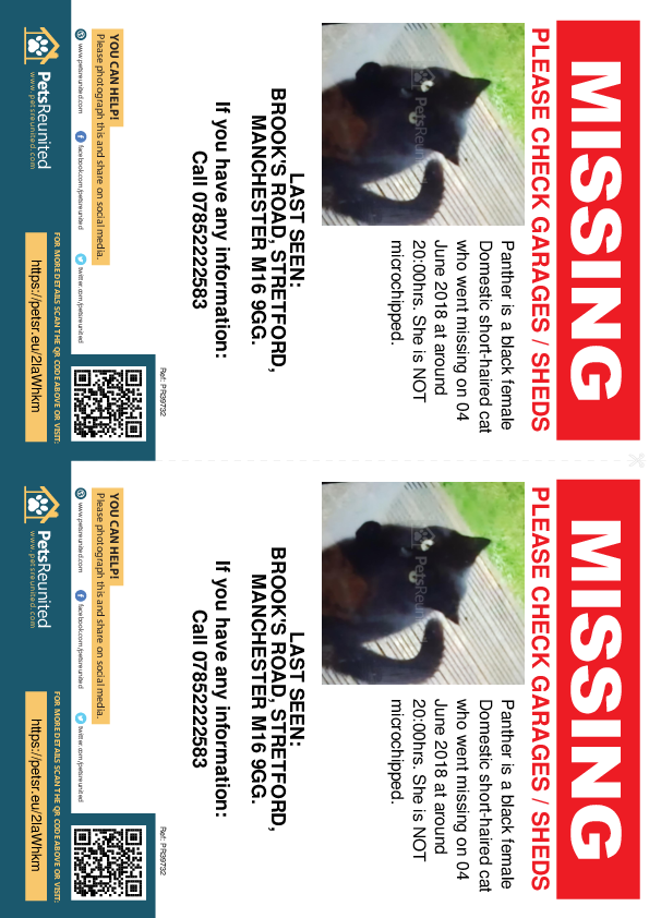 Lost pet flyers - Lost cat: Black cat called Panther