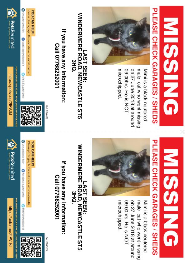 Lost pet flyers - Lost cat: Black cat called Mimi