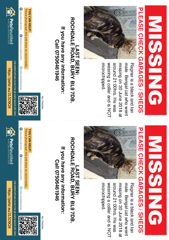 Lost pet flyers - Lost cat: Black and Tan Bengal cat called Ragnar
