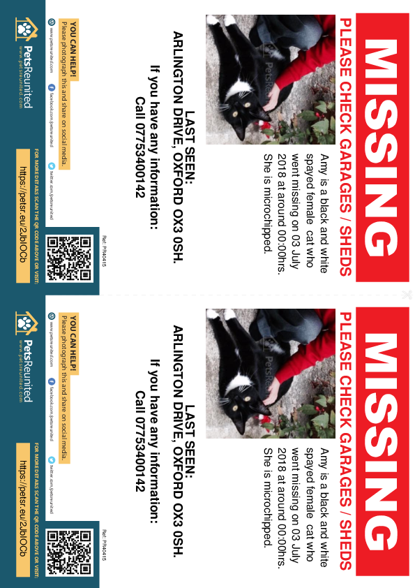Lost pet flyers - Lost cat: Black and white cat called Amy