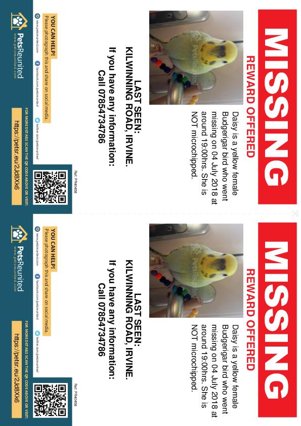 Lost pet flyers - Lost bird: Yellow Budgerigar bird called Daisy