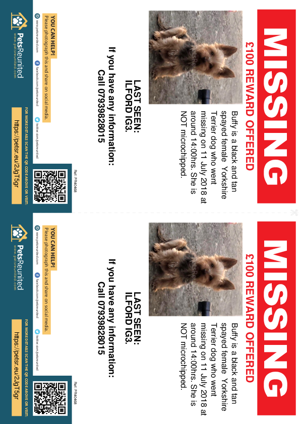 Lost pet flyers - Lost dog: Black and Tan Yorkshire Terrier dog called Buffy