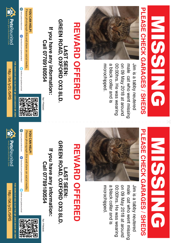 Lost pet flyers - Lost cat: Tabby cat called Jim