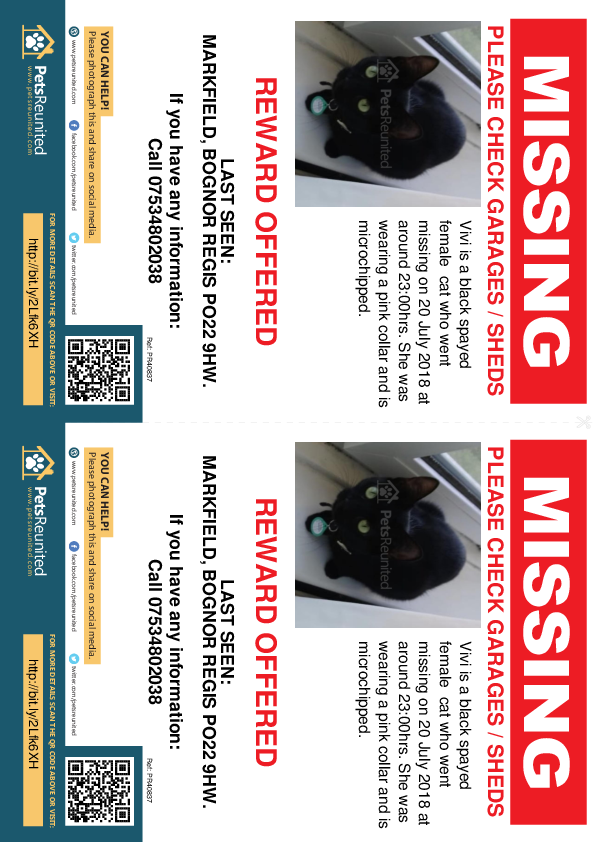 Lost pet flyers - Lost cat: Black cat called Vivi
