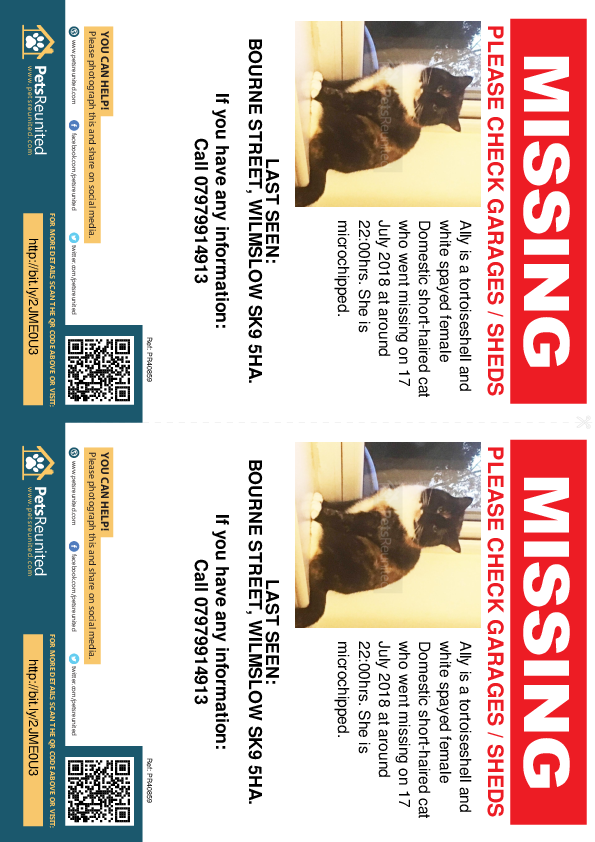 Lost pet flyers - Lost cat: Tortoiseshell and white cat called Ally